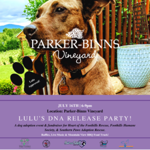 Lulu's DNA Release Party