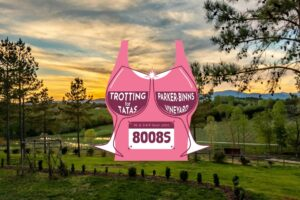 Trotting for Tatas 5k and Ultra
